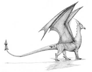 Dragon electrico/Electric dragon by javifel