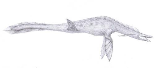 Dragon mar/Sea dragon by javifel