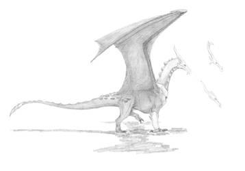 Dragon metal/Metal dragon by javifel