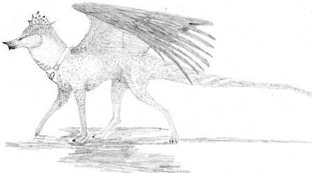 Dragon Puro/Pure Dragon by javifel