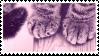 [stamp/f2u] paws by snoowva