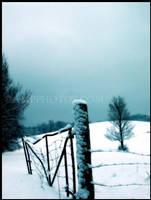 Desolater Winter Two by mrsselfdestruct