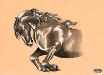 Horse Rage by esaber