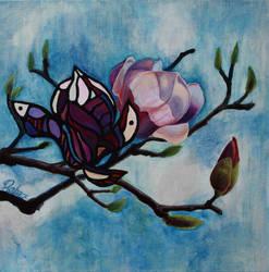 Magnolia by RebexTrip
