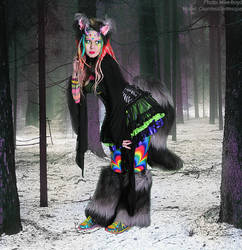 rainbow snow wolf by Countess-Grotesque