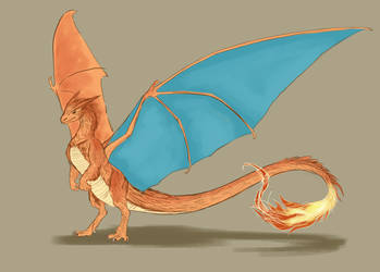feathery Charizard sketch by MissMagnificent