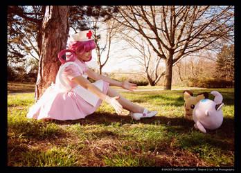 Nurse Joy with the Pokemon by Sutibu-sama