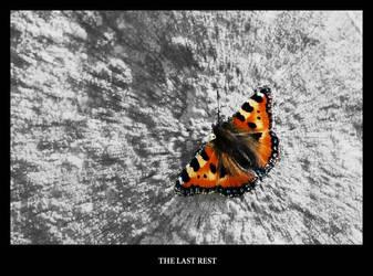 The Last Rest by gshegosh
