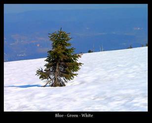 Blue - Green - White by gshegosh