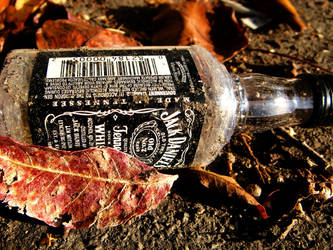 Jack and Daniel Sitting in a Bottle. by zombiecupcakezz