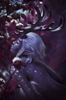 deer by Haji-san