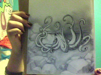 octopus photo by angelsaga