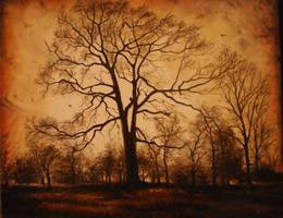 Late Autumn by sorinapostolescu