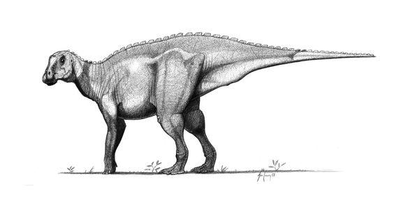 Gryposaurus notabilis by jconway