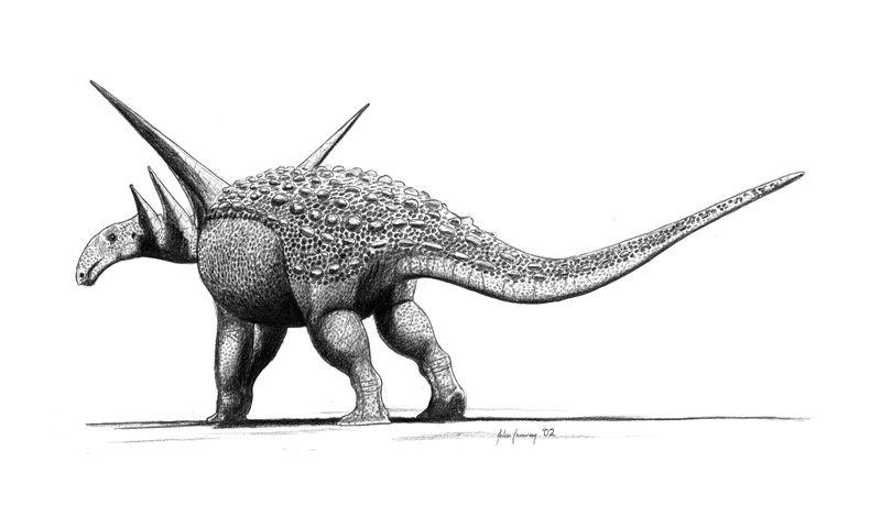 Sauropelta edwardsorum by jconway