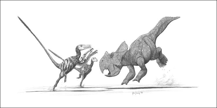 Velociraptor and Protoceratops by jconway