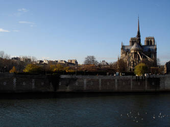 Notre Dame from the Ile Saint-Louis by fabular-mrfox