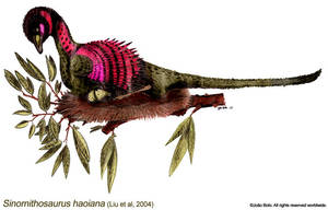 Sinornithosaurus haoiana by Sputatrix