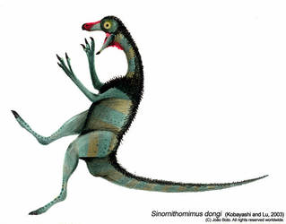 Sinornithomimus dongi by Sputatrix