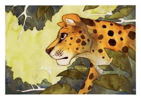 Leopard by Kamirah