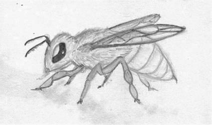 Bee Drawing by Ignis-Corvus
