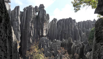 Stone Forest Kunming (China) by boodlemoo