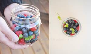 All The Sweet Berries by anxiri