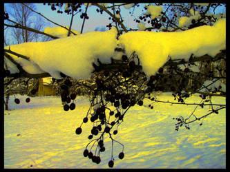 icecream winter by excitement-catcher