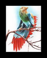Sky bird by Mihaio