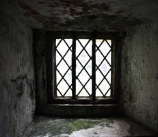 Window - New version by NickiStock
