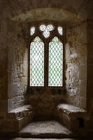 Castle Window - Battle Abbey by NickiStock