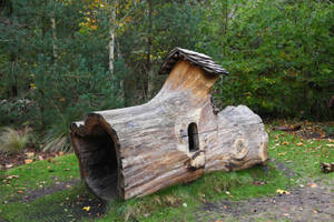 Wooded Home Stock Image by NickiStock