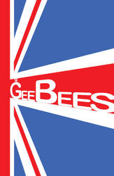 The GeeBees3 by StevenDQuirke