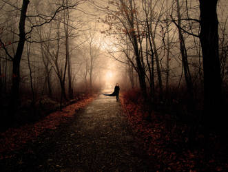 Through the Woods by kcebertxela