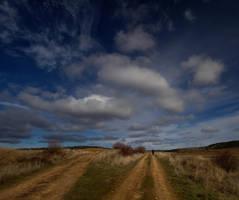 Choose your way by SergioGonzalez