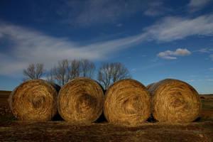 Eight hay rolls by SergioGonzalez