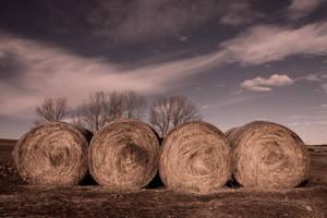 Eight hay roll bw by SergioGonzalez