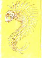 fish bones by euphorbic