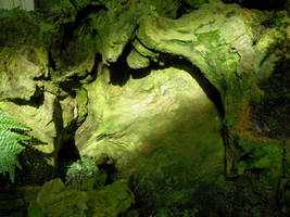 Green Shadows by LodeinArt