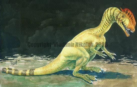 Dilophosaurus wetherelli 2 by T-PEKC
