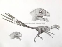 Epidexipteryx hui by T-PEKC