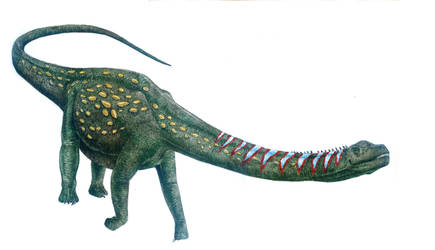 Argentinosaurus huinculensis by T-PEKC