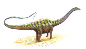 Diplodocus carnegii by T-PEKC