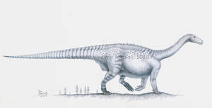 Melanorosaurus readi by T-PEKC