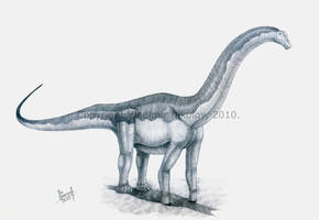 Isisaurus colberti by T-PEKC