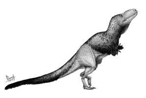 Daspletosaurus torosus by T-PEKC