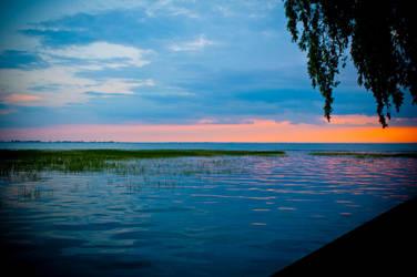 Bouvier Bay by Cruzweb