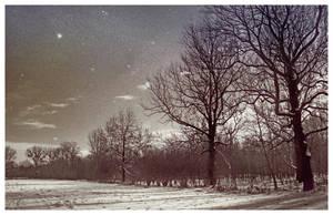 Aulandschaft - Tag und Nacht by brechnuss