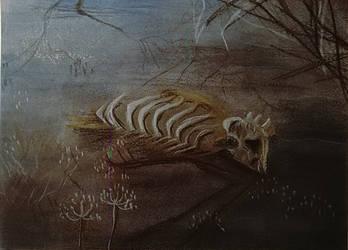 bones by Venorra