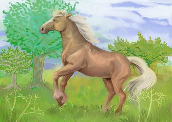 Rearing on a field by Venorra